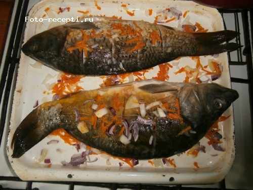 карп с морковью и луком в духовке рецепт с фото