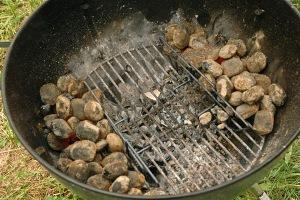 - Costillas de cerdo BBQ